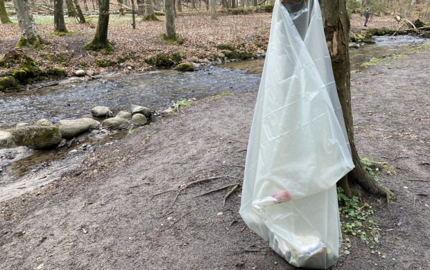 Worki na śmieci wiszą także na terenie Trójmiejskiego Parku Krajobrazowego.