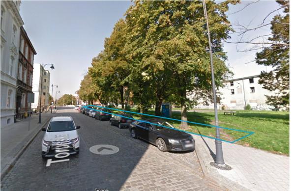 Szpaler drzew przy ul. Toruńskiej, który nie podlega wycince w związku z realizacją inwestycji.