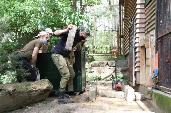 Nowy wybieg dla pumy w węgierskim zoo.
