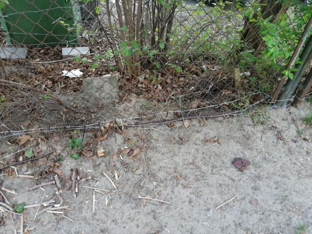 Dziurawy płot został połączony drutem kolczastym.