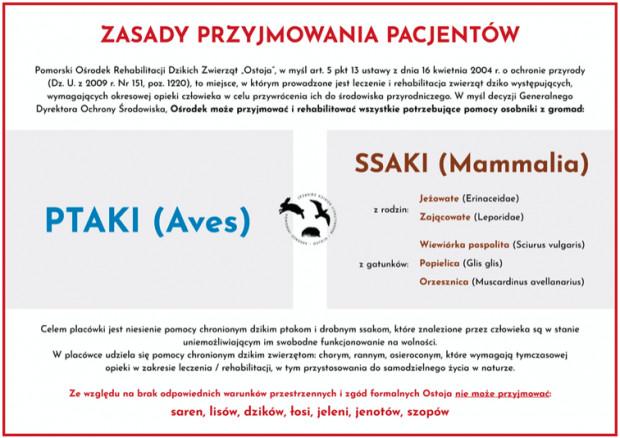 Zasady przyjmowania pacjentów w Ostoi nie dopuszczają przyjęcia zwierząt takich jak dziki.