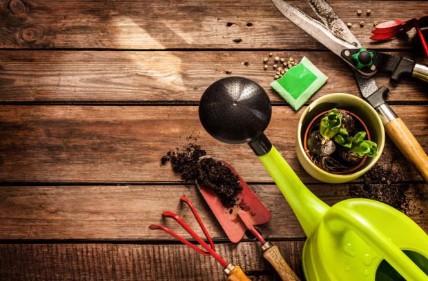 Trudno wyobrazić sobie podstawowe prace ogrodowe bez sekatora, szpadla czy grabi. Co jeszcze może nam się przydać w ogrodzie?