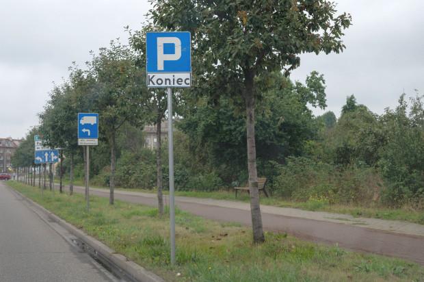 Wzorem ubiegłego roku wyznaczone zostaną miejsca parkingowe wzdłuż ul. Marynarki Polskiej w Nowym Porcie. Będzie ich jednak mniej.