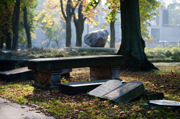 Lapidarium w Parku Akademickim przy Politechnice Gdańskiej we Wrzeszczu. To właśnie tutaj są gromadzone pozostałości poniemieckich cmentarzy, które zostały zlikwidowane po wojnie.