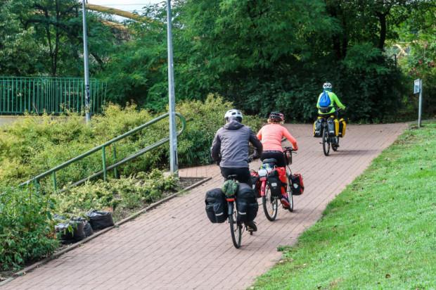 Pod względem ekologii rower nie ma sobie równych.