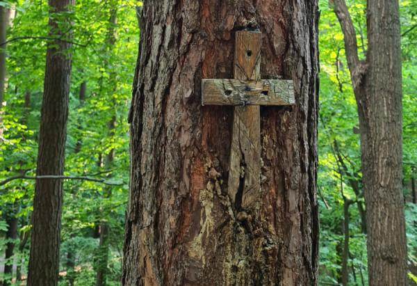 Ten krzyż pojawił się dwa miesiące po zabójstwie Darii. Kto go przybił? Ojciec dziewczyny twierdzi, że jej zabójca. Prokuratura i policja uważają jednak, że nie ma przesłanek potwierdzających tę tezę.