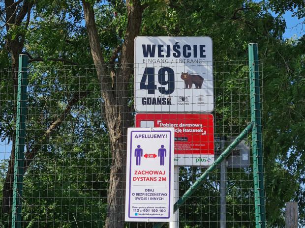 """""""Opiekunem"""" wejścia na plażę nr 49 w Brzeźnie jest niedźwiedź."""
