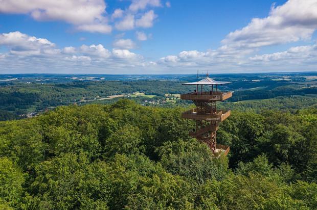 Wieża widokowa w Wieżycy.