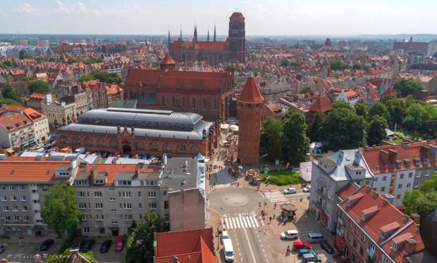 Radni KO zaproponowali zasadzenia nowych drzew w centrum Gdańska. Radni PiS dodali do tego długą listę lokalizacji z terenu całego miasta.