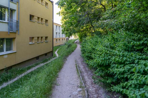 Istniejąca ścieżka do ul. Dębowej wzdłuż akademika GUMed, która będzie remontowana.