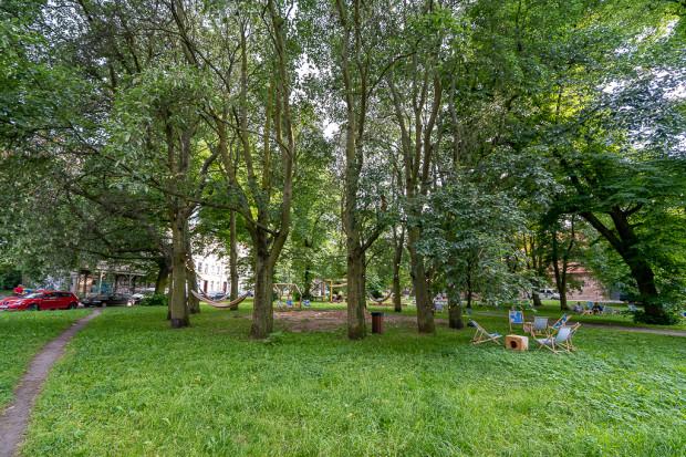Copacii plantați pe o diagramă circulară au fost aprobați după război de către PWKZ.