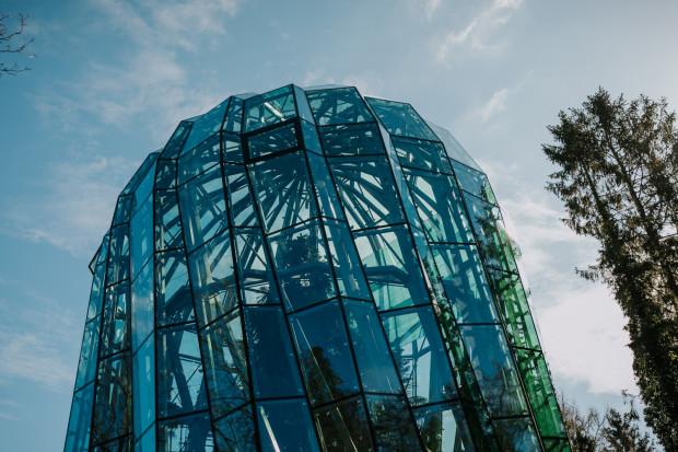 Miasto ma coraz większy problem z zagospodarowaniem nowej palmiarni i powstającej oranżerii w parku Oliwskim.