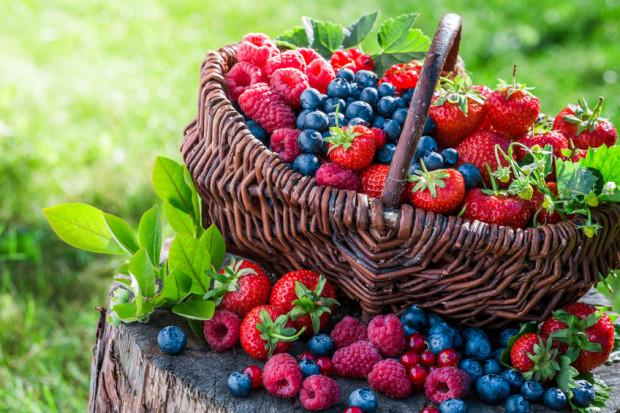 Owoce sezonowe są źródłem wielu witamin. Mają dobroczynne działanie na organizm, dlatego warto dodawać je do posiłków lub spożywać oddzielnie.