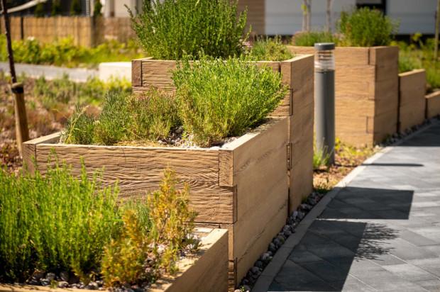 Osiedlowe ogródki pozwalają mieszkańcom miast na kontakt z ziemią i naturą. Mogą oni wpływać na własne otocznie, przy okazji budując relacje z sąsiadami.