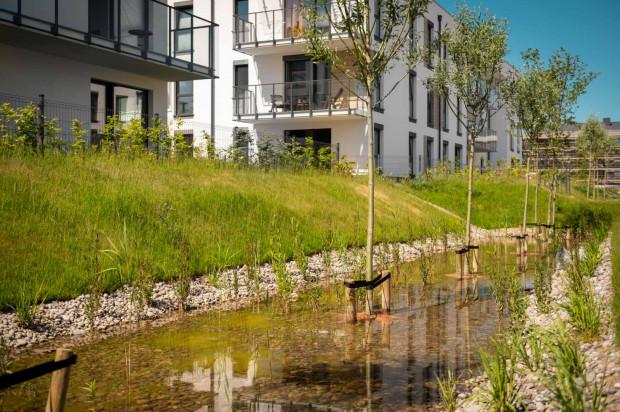 Osiedle Beauforta. Rozbudowany system osiedlowej retencji pozwala tu zatrzymywać wodę opadową i wykorzystywać ją w okresie suszy.