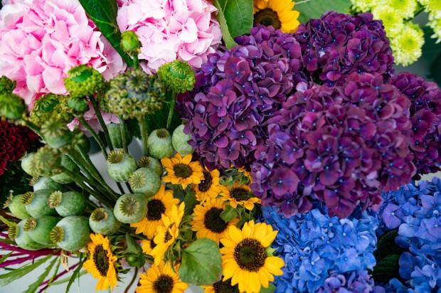 Gdański Targ Roślinny był tym razem rozczarowująco skromny. Poza drobnymi wyjątkami asortyment był podobny do tego, co możemy kupić w każdej kwiaciarni.