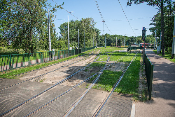 Zielone torowisko na pętli w Jelitkowie.