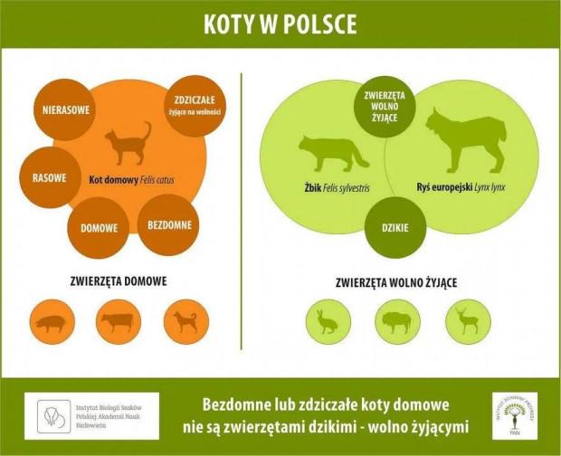 Stanowisko Instytutu Ochrony Przyrody PAN.