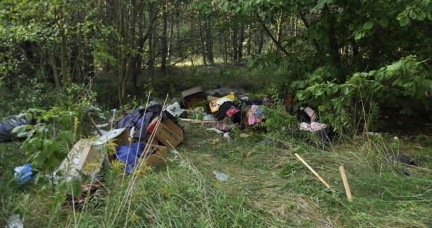 Więźniowie będą m.in. sprzątać śmieci w lesie.