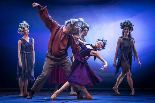 Dużo nowych premier, wznowienia spektakli, bogate repertuary, mnóstwo wydarzeń teatralnych czeka nas tej jesieni w Trójmieście. Na zdjęciu Osioł-Rzemieślnik (Barłomiej Więckowski), Mayu Takata (Tytania) ze spektaklu Opery Bałtyckiej.
