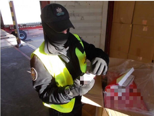W kontenerze miały przypłynąć plecaki. Znaleziono tam jednak papierosy.