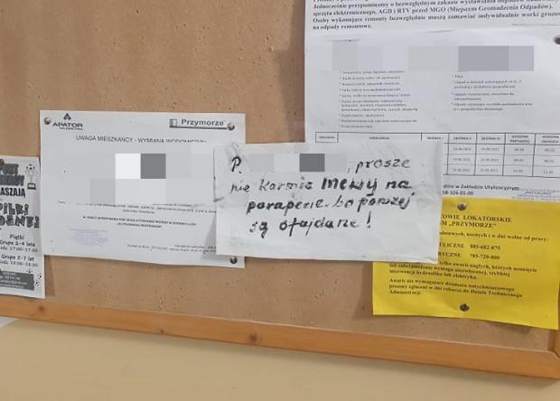 Na tablicy ogłoszeń jednej z klatek na Przymorzu wywieszono apel o to, by nie karmić ptaków.