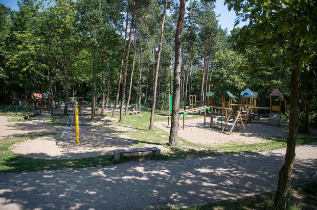 Istniejący plac zabaw w lesie na Kozaczej Górze stworzony jest z myślą o młodszych dzieciach. 10-latka chce to zmienić.
