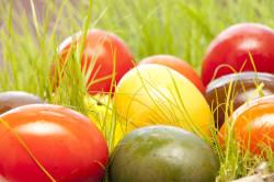 Dziś do barwienia kraszanek używa się często sztucznych barwników, kiedyś wykorzystywano naturalne, np. łuski cebuli, dzięki którym uzyskiwało się czerwono-brązowy kolor.