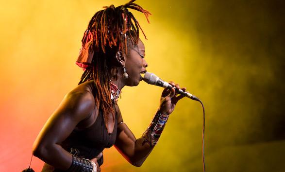 Szalony, ale i zapewne niezwykle zmysłowy taniec w wykonaniu wokalistki Dobet Gnahore z Wybrzeża Kości Słoniowej zobaczymy w Parku Kolibki w sobotę.