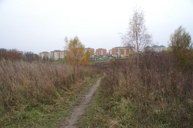 Po deszczu dróżka przez górkę, którą dzieci z Porębskiego chodzą do szkoły przy Człuchowskiej zamienia się w bagno. Czy nie powinna tu powstać jakaś droga?