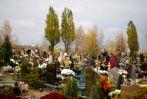 Cmentarz �ostowicki Komunalny