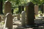 Cmentarz �ydowski