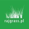 Rajgrass