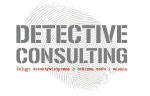 Detective Consulting