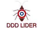 DDD Lider