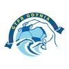 Arka Gdynia - piłka ręczna k