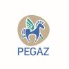 Poradnia Psychologiczno-Pedagogiczna Pegaz