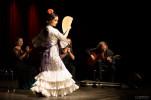 Andalu Flamenco