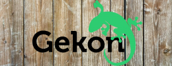 Gekon zoologiczny