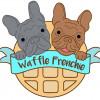 Waffle Frenchie