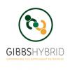 Gibbs Hybrid